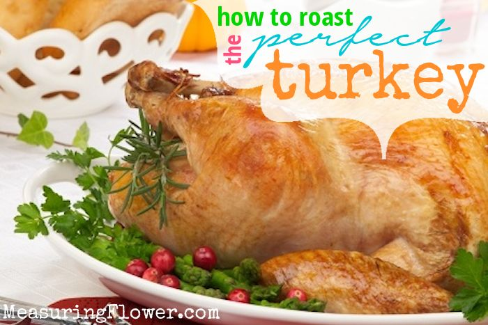 How to Roast the Perfect Turkey for Thanksgiving {Plus an Easy Turkey ...